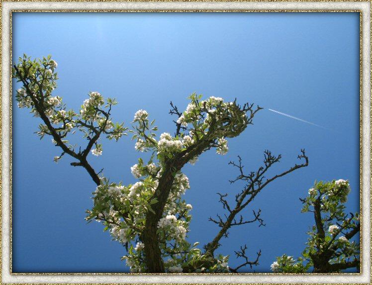 Helder blauwe lucht